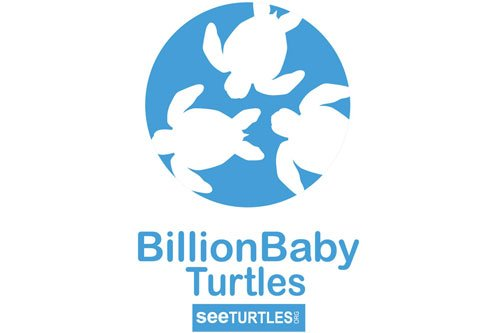 Billion Baby Turtles Logo