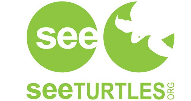 See Turtles Logo
